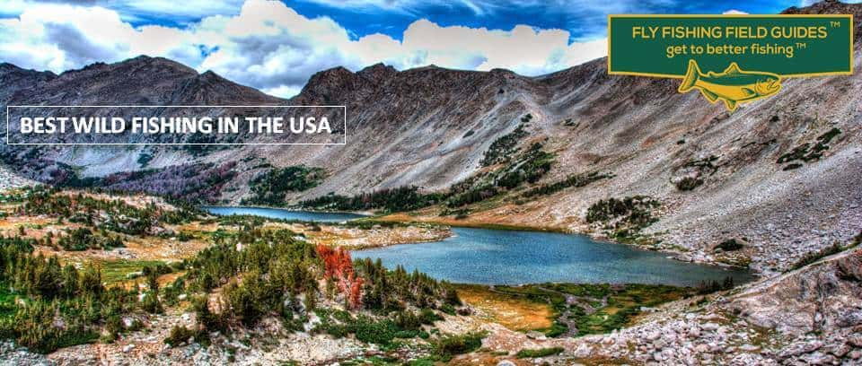 best fly fishing in usa