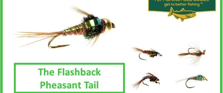 Flashback Pheasant Tail