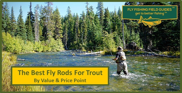best fly rods for trout