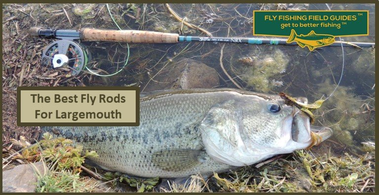 fly rods for bass