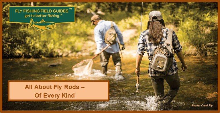 Best Fly Rod