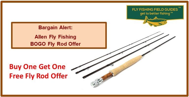 Ally Fly Fishing